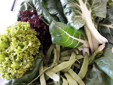 Produtos extraídos da bio-horta para as belas sopinhas em Parceria com o Centro de Dia .